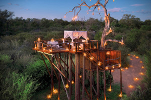 romantic-tree-house